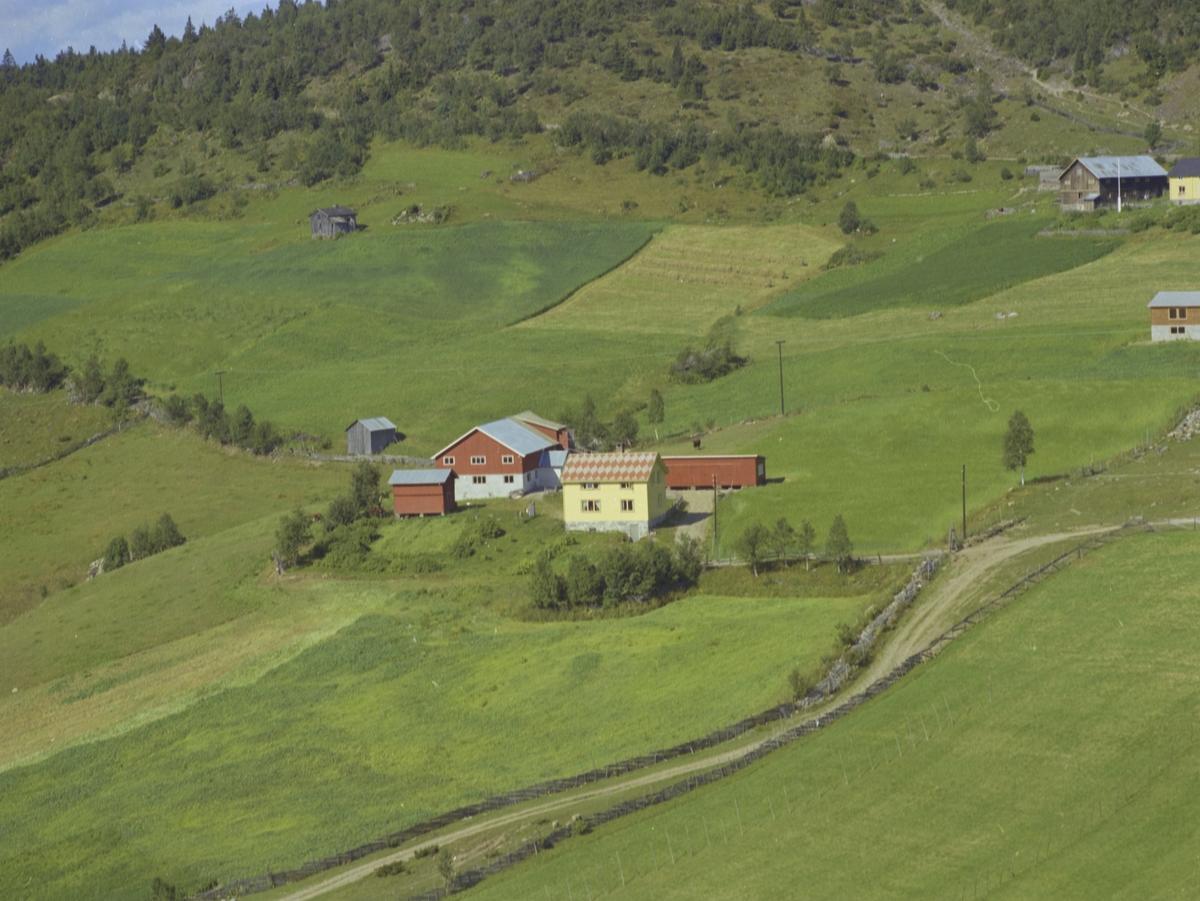 Kolden, gårdsbruk, hesjer, Østre Gausdal