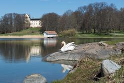 Tyresö slott, slottsparken