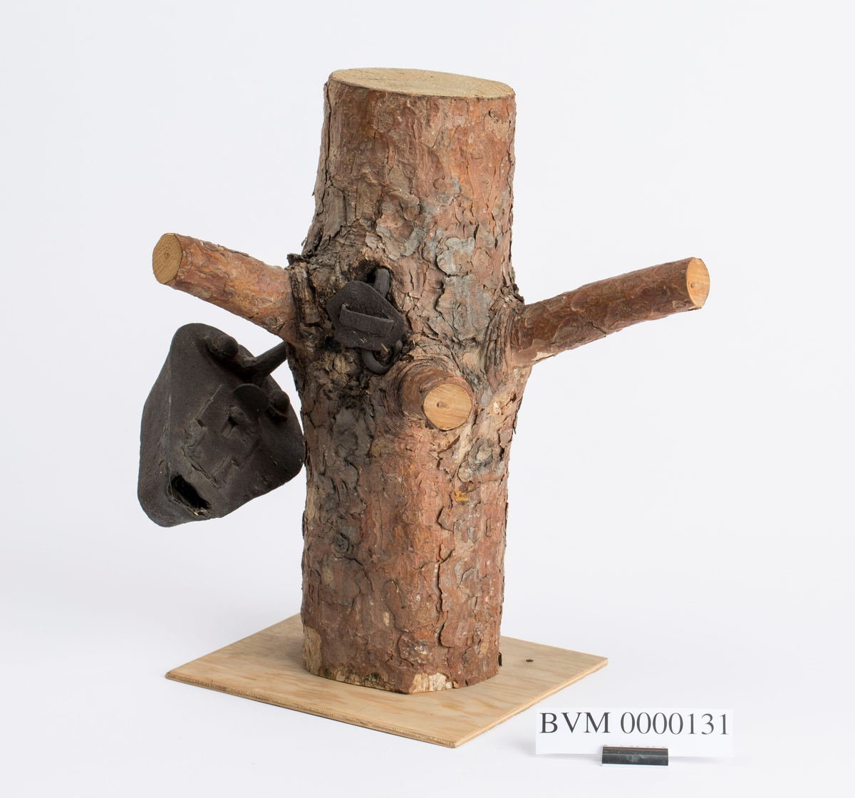 """""""Gammel grubelampe innvokst i et tre ved Kristianstolls mundloch i Saggrenda."""" NTM: """"Denne stollkjørerlampe ble funnet i toppen av en furu ved Kristianstolls muntloch i Saggrenda. Den har vært hengt på en gren og er siden vokset inn i treet. Lampen er i konstruksjon lik de andre oljelamper med den forskjell at den hadde større oljebrenner."""""""