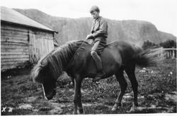 Fra gården Heimdal. Gutt på hest.