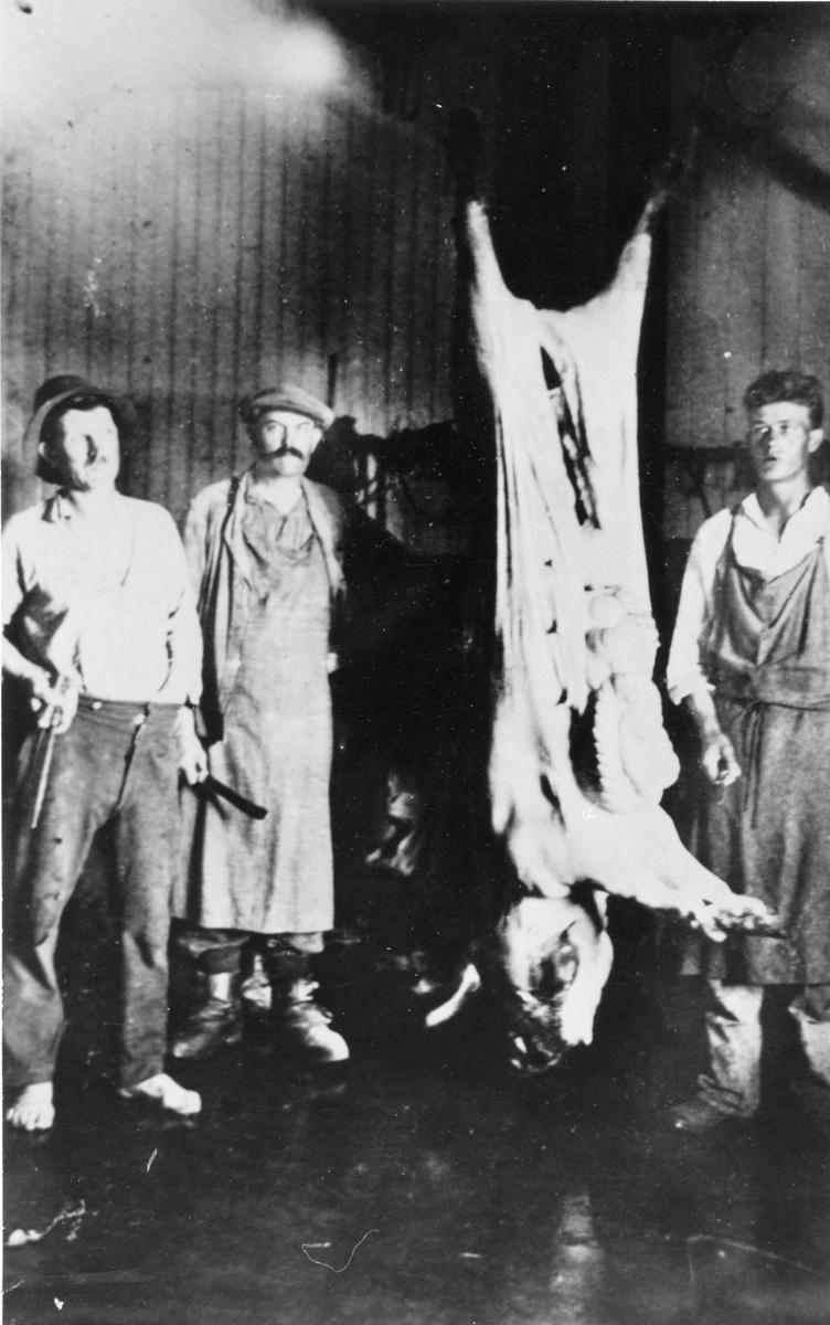 Aldéns slakteri i Åhs, tidigt 1930-tal. Från vänster: Per Markusson (Norrgårds-Pelle), Nils Aldén (Åhs) och Bror Blomberg (Berg). Grisen lär ha vägt ca 250 kg.