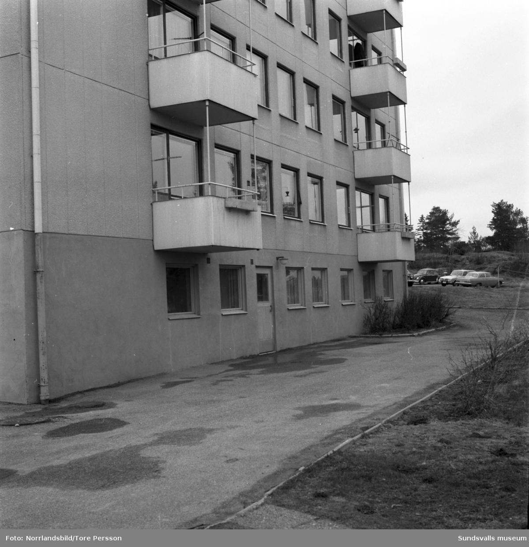 Exteriörbild av flerfamiljshus vid Tallrotsgatan 10 i Haga.