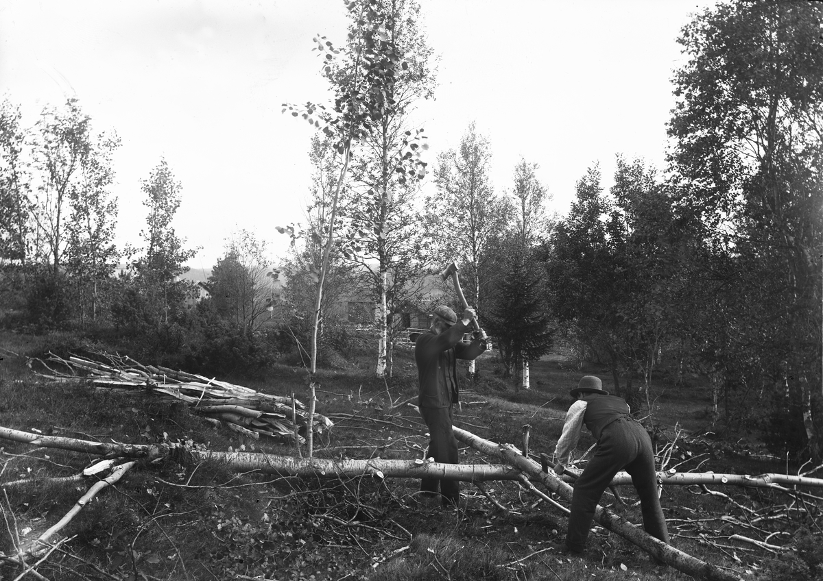 """""""Värmland. Jösse hd. Mangskog sn.Bjurbäcken. Klyvning av gärdsle till gärdesgård."""""""