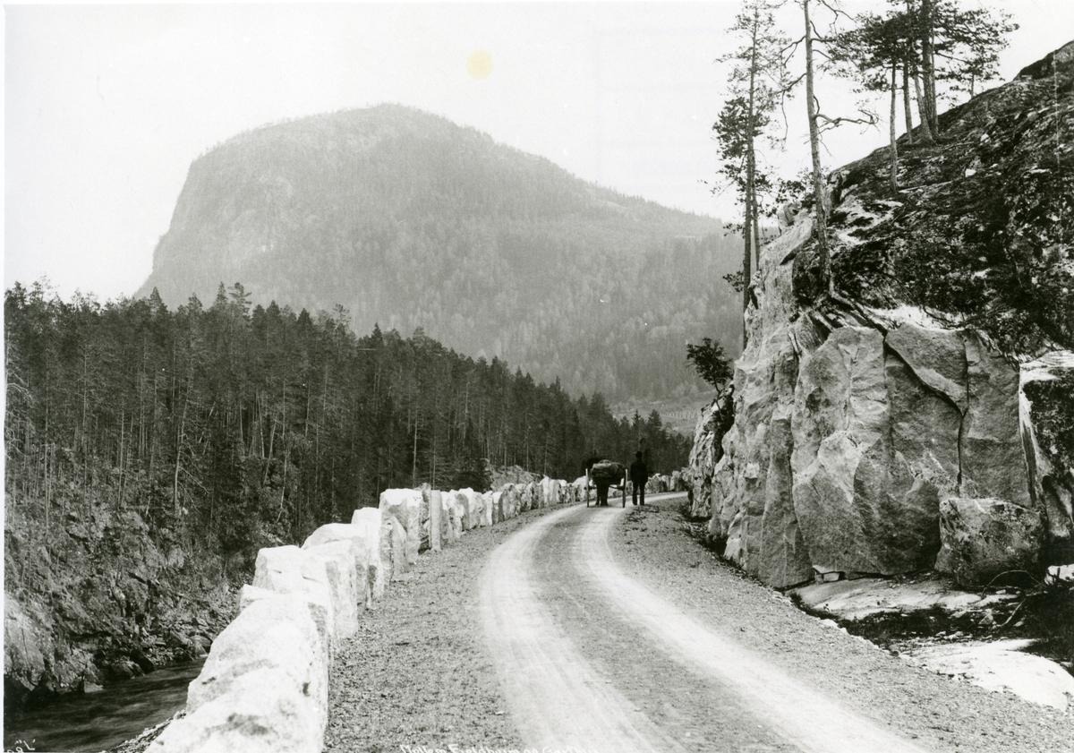 Vegen mellom Hølerabrua og Fønhusbrua.