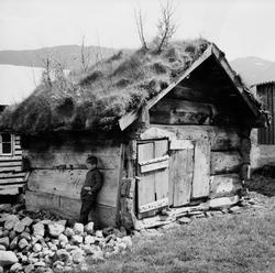 Dokumentasjonsbilder i serie av et lite, gammelt hus. Skal h