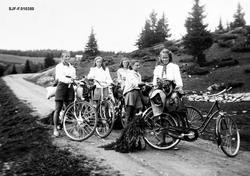 Friluftsliv under 2. verdenskrig.  Bildet viser fem elverums