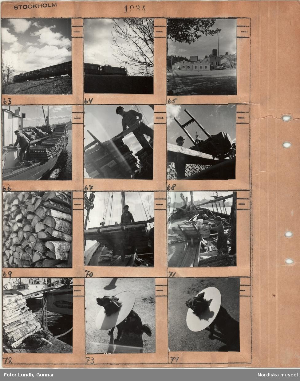 Motiv: Stockholm, tåg, industribyggnad exteriör, män som lossar en vedskuta vid kaj, hund med stor halskrage.