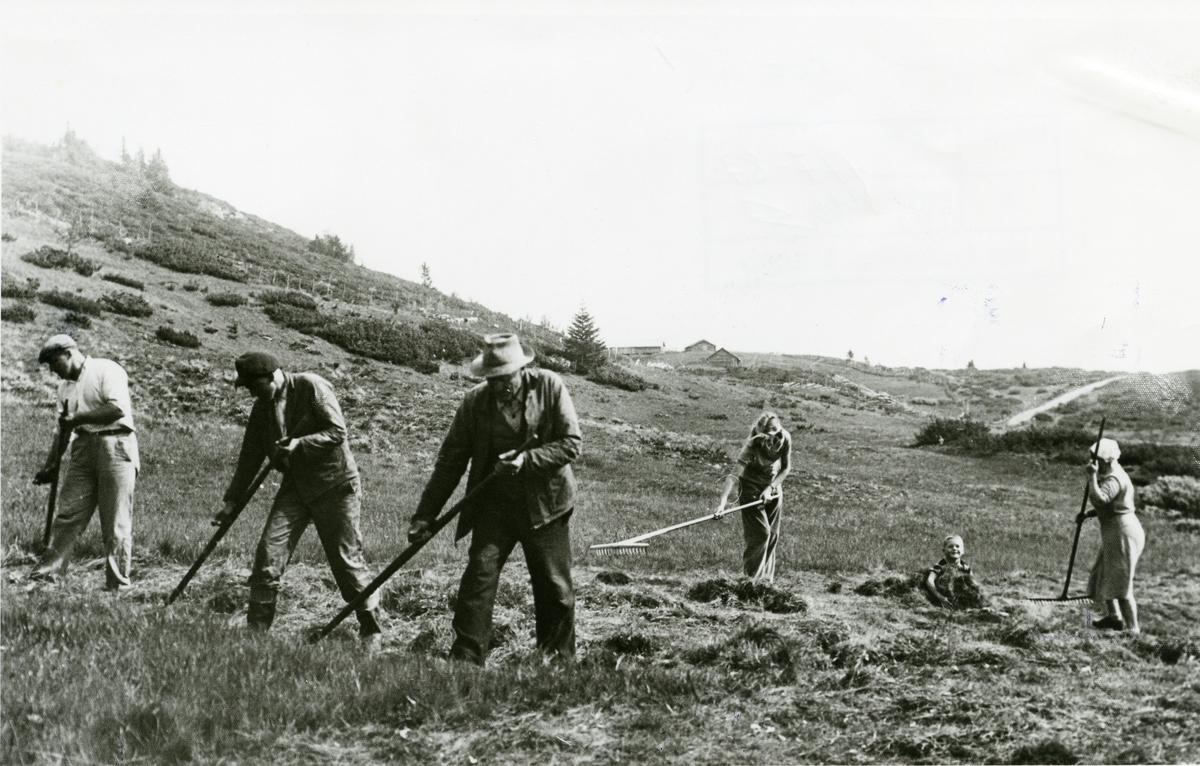 Slottånn, Søre Fjellstølen.