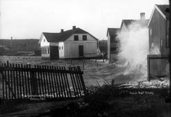 Fra Værlebugten, Moss. Høsten 1911.