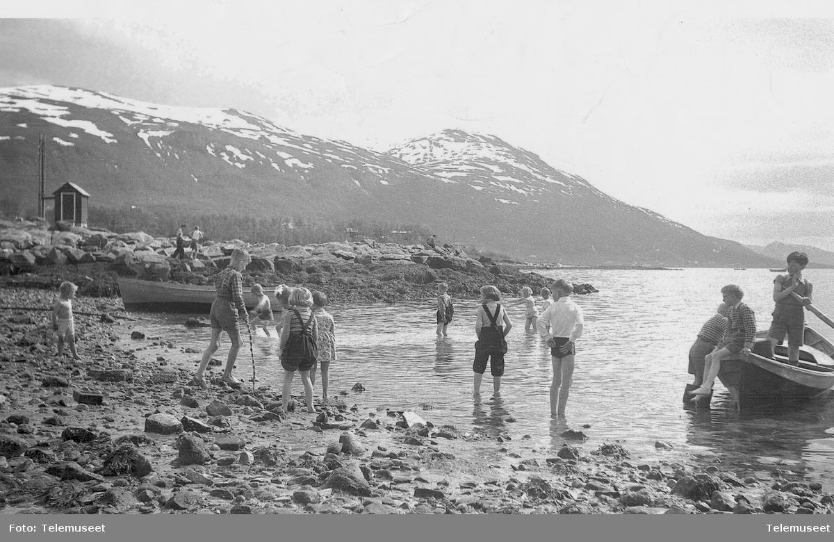 Telegrafbukta Tromsø