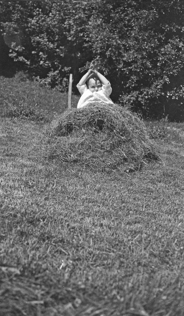Barn som sitter på gresset i solskinnet og leker med litt høy. Hverdagsfoto.