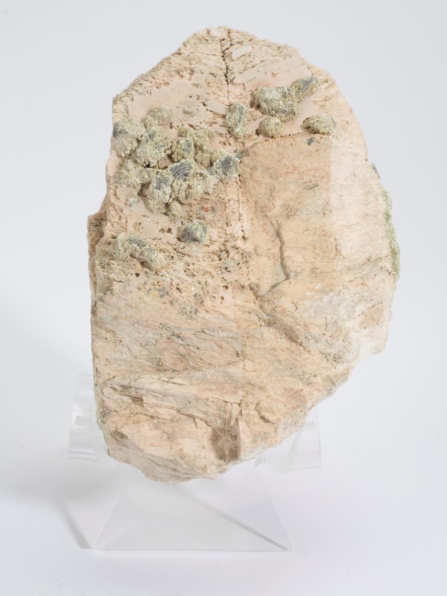 Orthoklas med spesiell Carlsbad-tvilling eller Maneback-tvilling, singel, med dotter av muskovitt-kloritt + hematitt(?) Drammensgranitten.