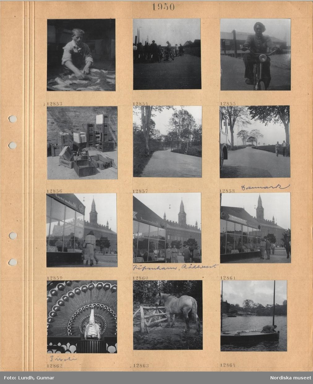 Motiv: En man med skyddsförkläde hanterar rensad fisk(?), personer som väntar på en kaj, cyklande man på kaj, tomma lådor för ölflaskor, trädkantad landsväg, nosen på en buss och två promenerande män på en landsväg, Köpenhamn, Rådhusplatsen, restaurang, byggnad med torn, Rådhuset, skulpterad påfågel med utfälld stjärt på Tivoli, arbetshäst i hage, en man på en mindre segelbåt.