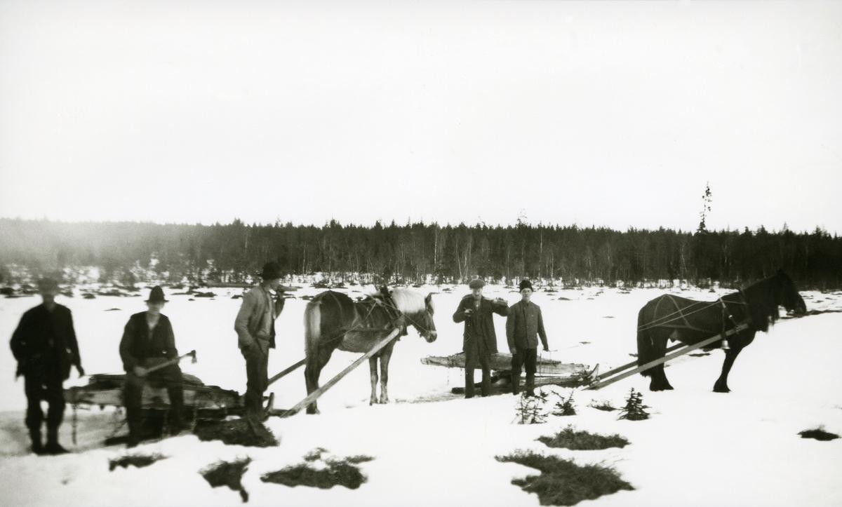 To hester m/tømmerlass ved Håkkåmakk (?). 5 menn