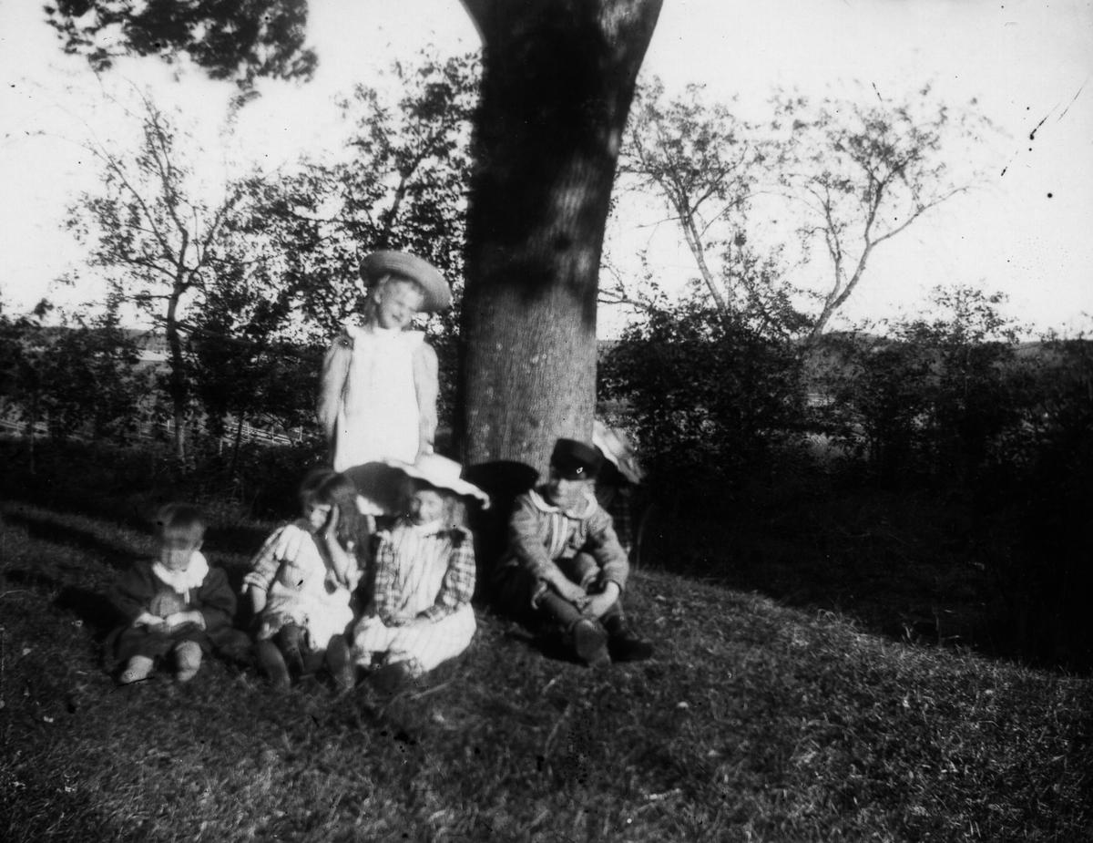 Fem barn samlade under ett träd.