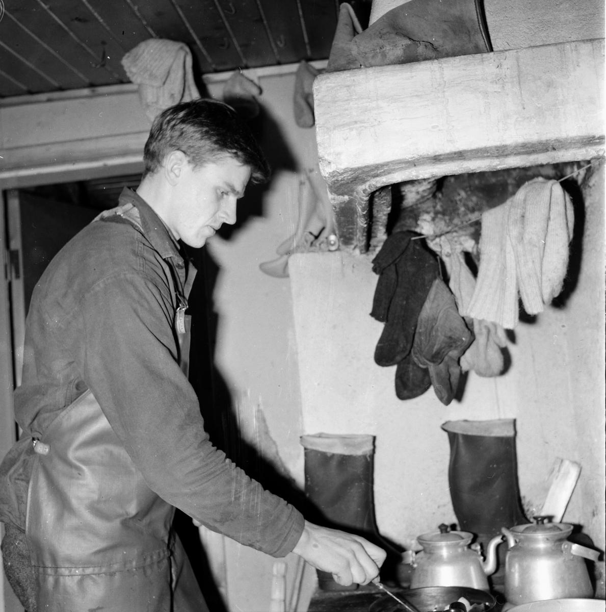 Skog. Skogsrepotage vid Sörbränningen. 26/1-1965