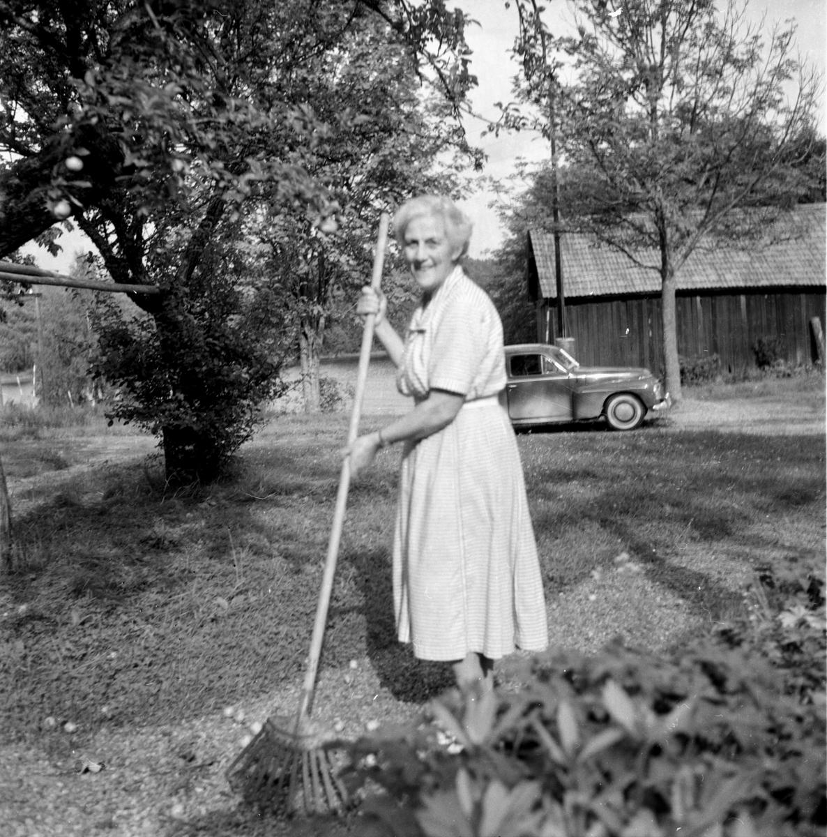 Strömbäck, Dag, Djuphällan, Hedemora. 12 aug. 1960