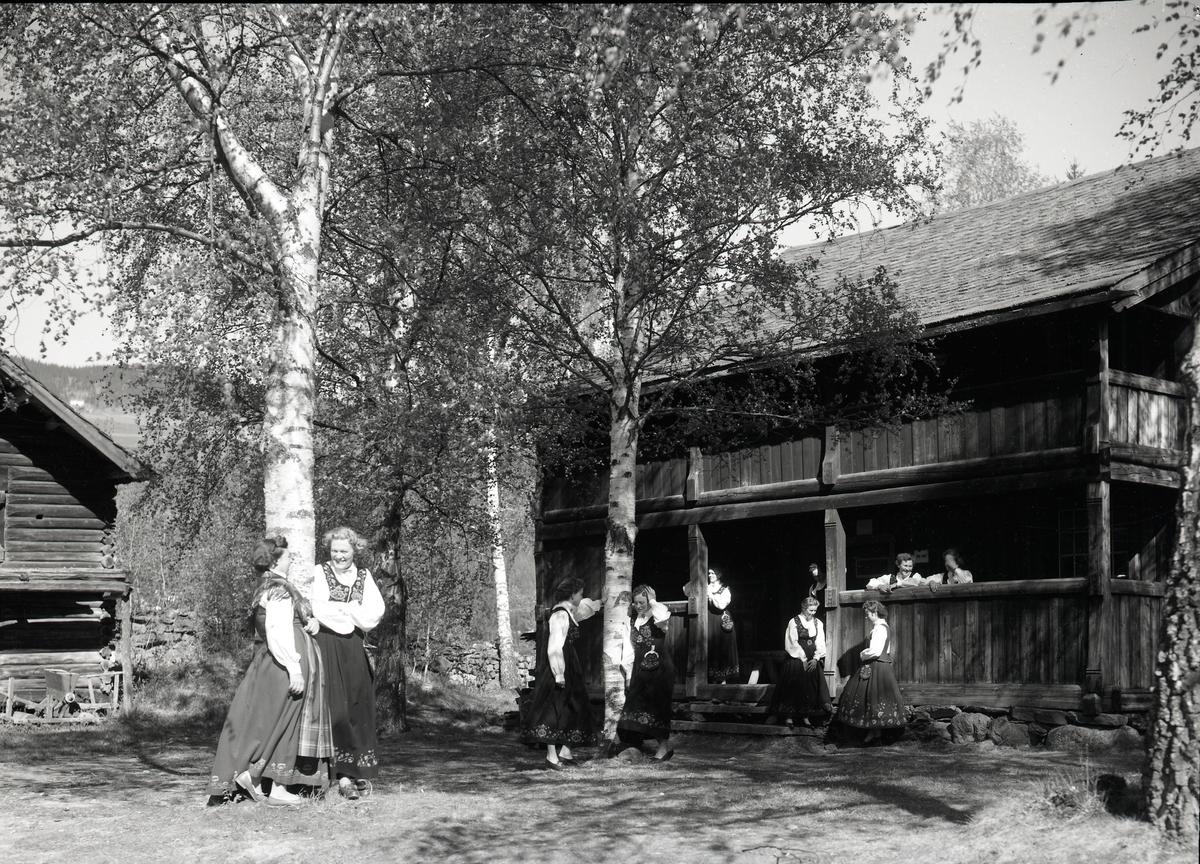 Bygning frå Røgne, Valdres Folkemuseum.