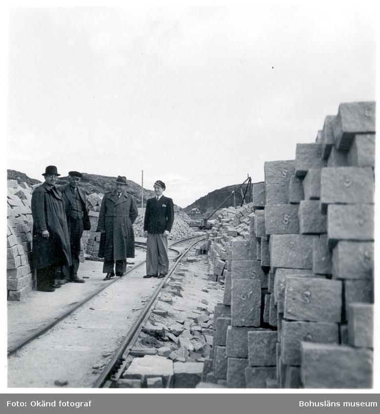 En grupp personer står i stenbrottet i Rörvik
