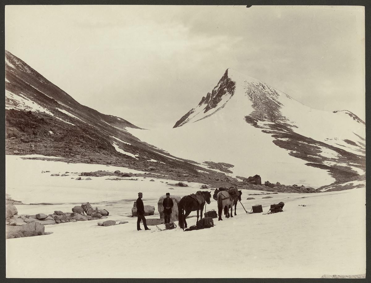 Simmeltind i Uladalen, Jotunheimen [Fotografi]
