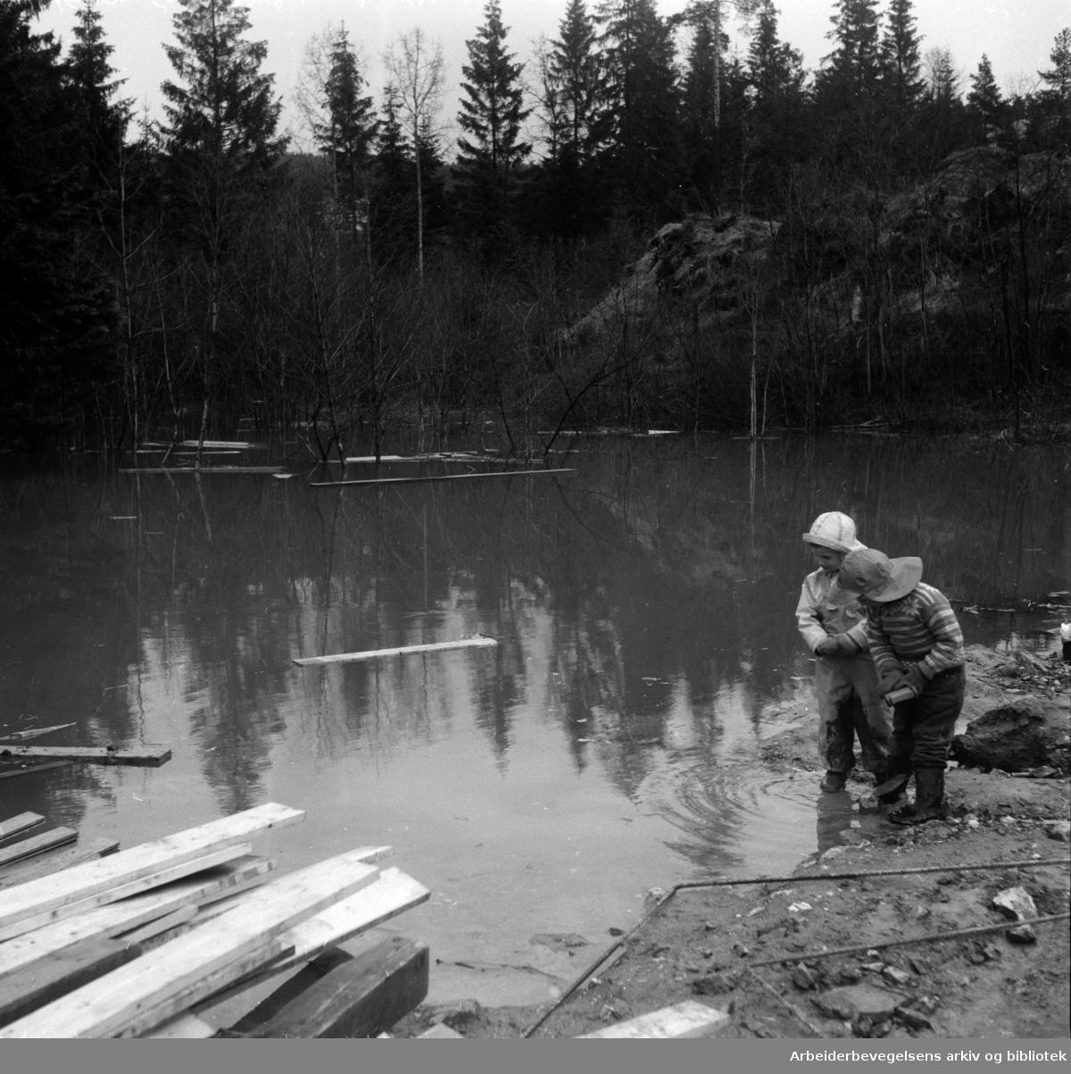 Tonsenhagen: Årvollbekken, Mai 1955