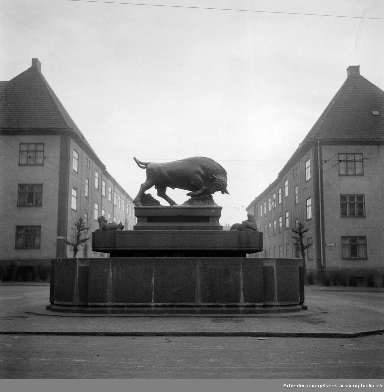 Torshov oksefontenen. Flytting av oksefontenen. Desember1955