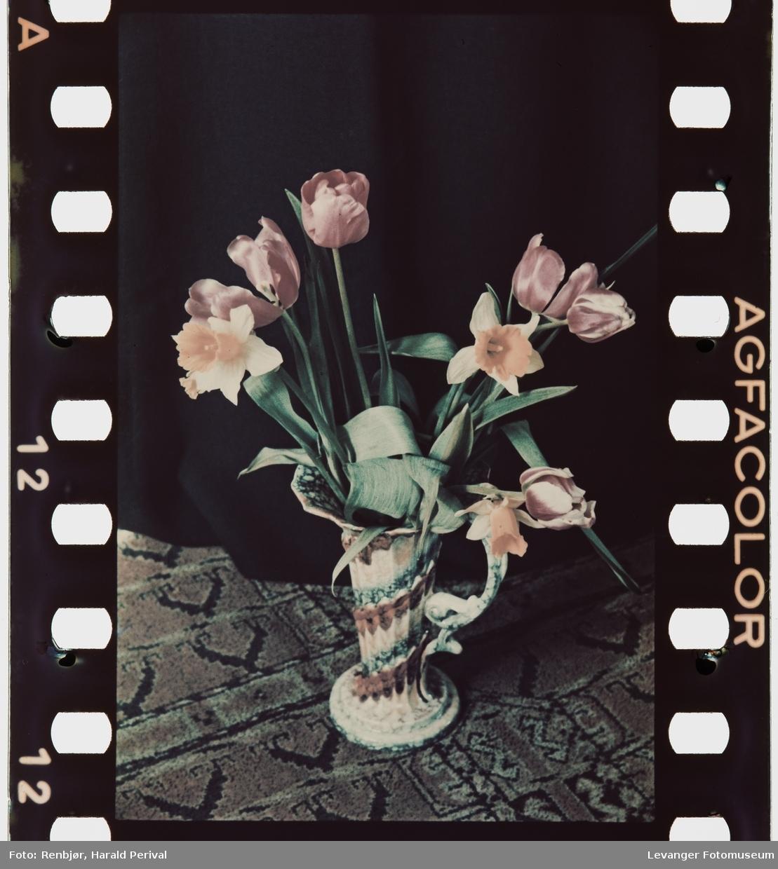 Blomster i vase,testbilde.