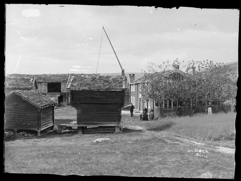 Aasengården (Foto/Photo)