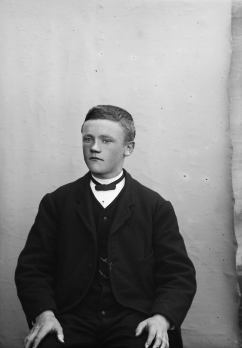 Portrett, ung mann sitter på stol, brystbilde. Ole H. Haugen