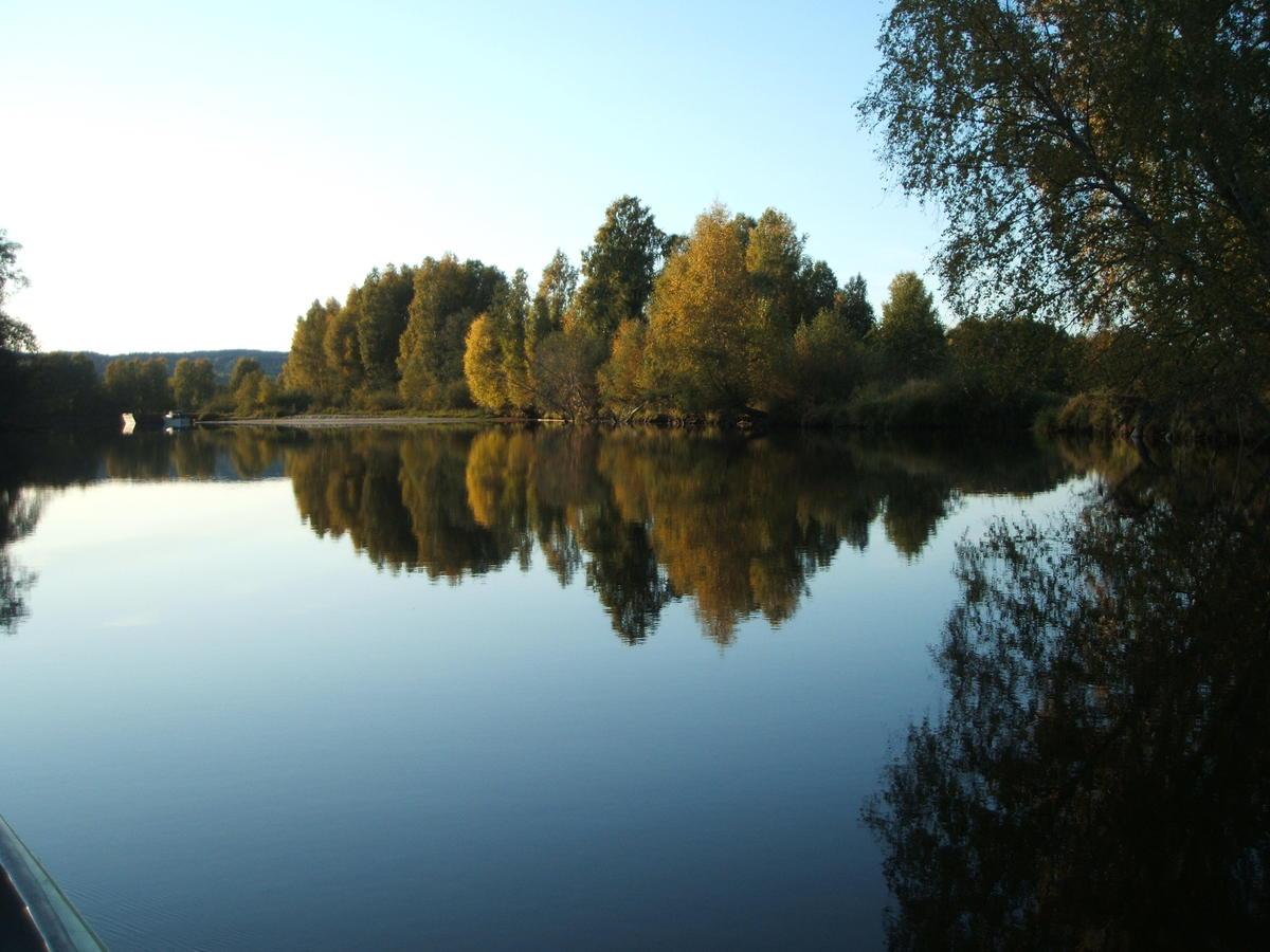 Deltaområdet Øyeren med trær og vann.