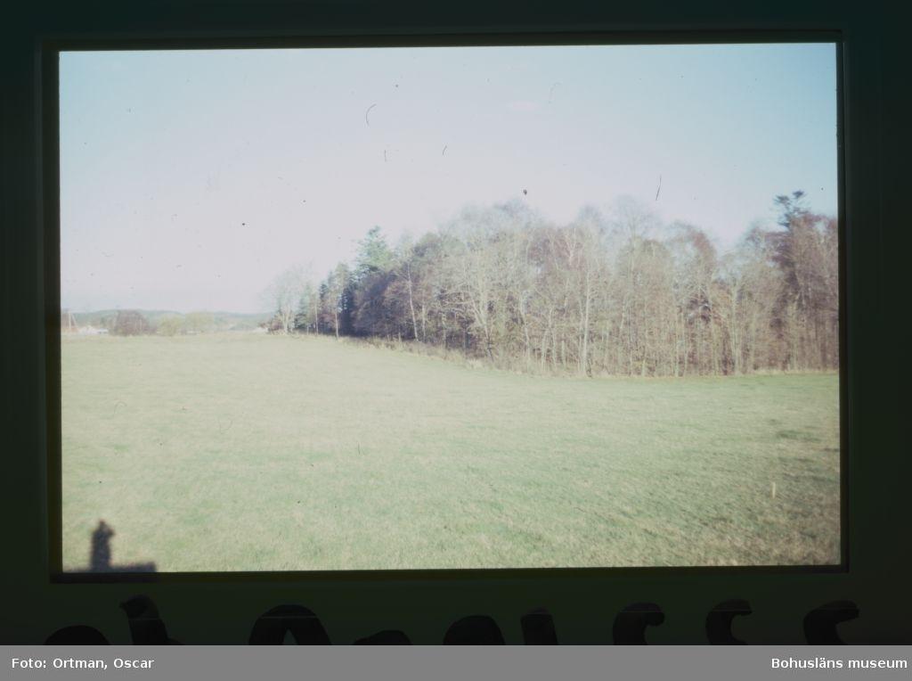 Norum 159 Norra delen av område A  lnnan avbaningen påbörjats Fotograferat från sydväst