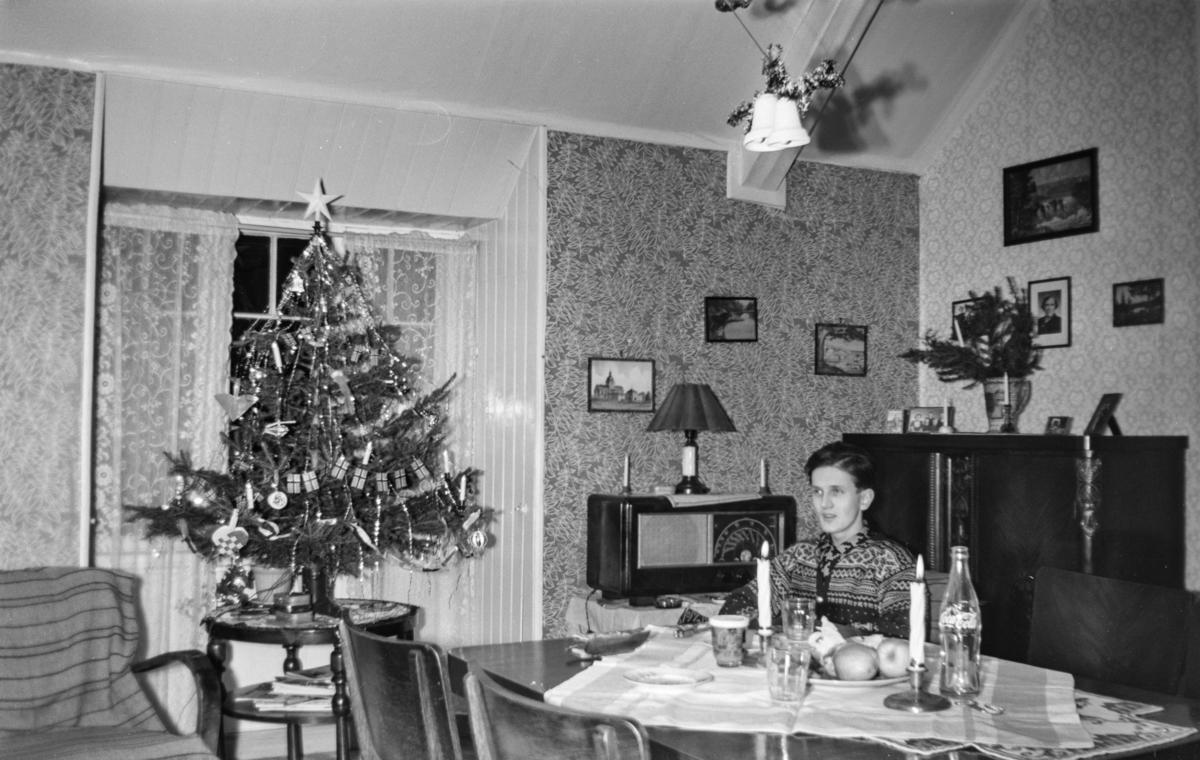 Julefeiring i stuen hjemme hos familien Windsheimer.