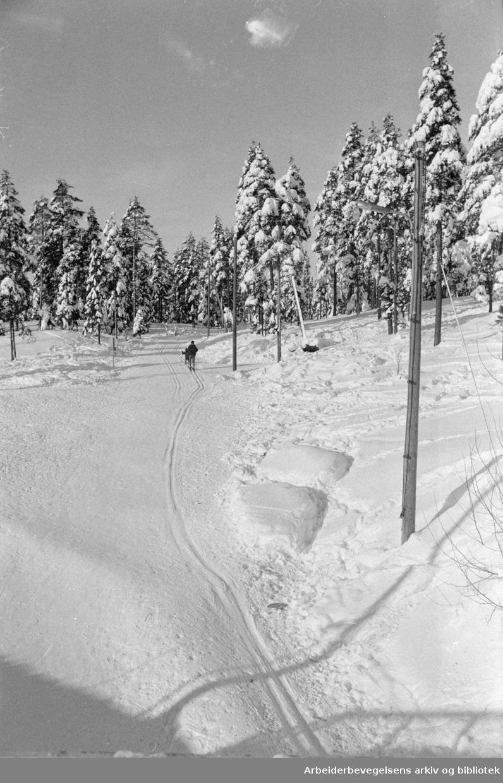 Østmarka: Lysløype fra Romsås og Trasop. Ved kirken på Romsås starter lysløypa. Februar 1978