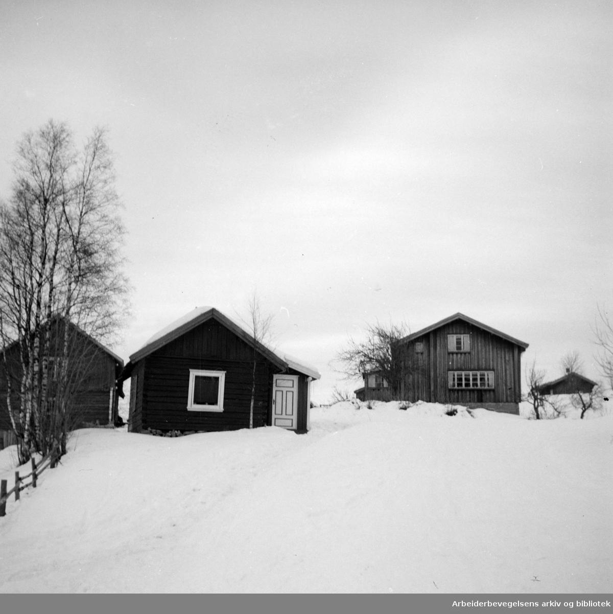 Nordmarka: Slaktern. husmannsplass. Januar 1953