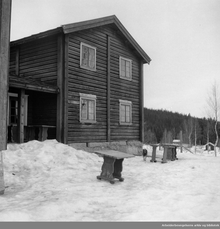 Nordmarka: Kikutstua. Mars 1953