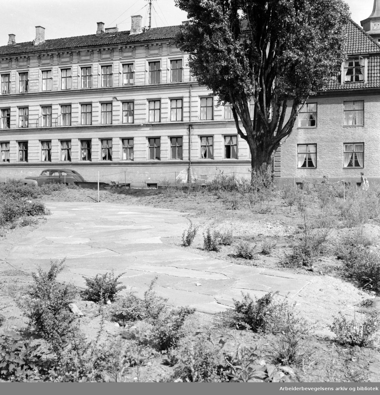 Johan Sverdrups plass. Nytt parkanlegg ved Holsts gate..Juli 1959