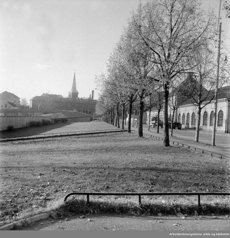 Hedmarksgata ved trikkehallene. Oktober 1956