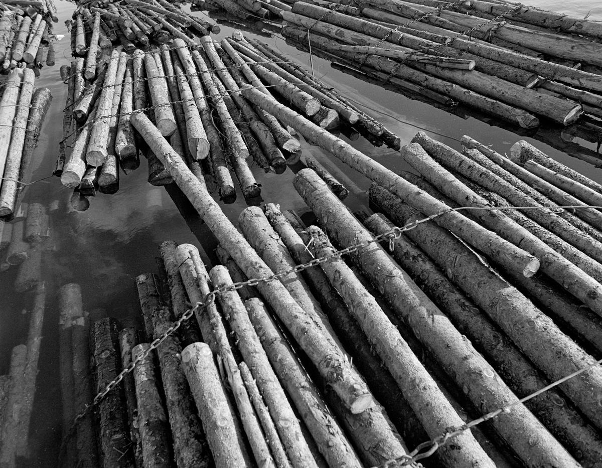 Detalj fra tømmerslep på flåtested i nordenden av Aremarksjøen i Østfold.  Fotografiet er tatt i 1982, som var den siste fløtingssesongen i Haldenvassdraget.  Fløtingsvirket i Haldenvassdraget ble de siste driftsåra utislått som lastebilbunter.  Disse buntene ble bundet sammen i store slep, som ble buksert over innsjøene med kraftige slepebåter som trekkraft.  Ved slusestedene måtte imidlertid slepene deles opp i kortere lenker, som fikk plass i slusekamrene.  Nedenfor slusene ble slusevendingene bundet sammen til lengre lenker igjen, og flere slike lenker ble samlet til store, rektangulære slep.  Over disse ble det spent en langsgående såkalt «revevaier» med en «hanefot» bakerst for sleping.  Tømmerbuntene ble holdt i hop av vaierbind med en kjetting i den ene ytterenden og et pæreformet ringledd, ei såkalt «kause», i den andre.  Lastebilsjåførene la vanligvis tre slike bind rundt hver bunt.  Dette fotografiet viser hvordan buntene ble lagt ende mot ende i slepene, med et par stokker som ble trukket over som mellomledd.  Fløterne slå små kramper av galvanisert ståltråd over vaierbindene og ned i disse stokkene for å hindre at slepet skulle «rakne» i lengderetningen.  En liten historikk om tømmerfløting og kanaliseringsarbeid i Haldenvassdraget finnes under fanen «Opplysninger».