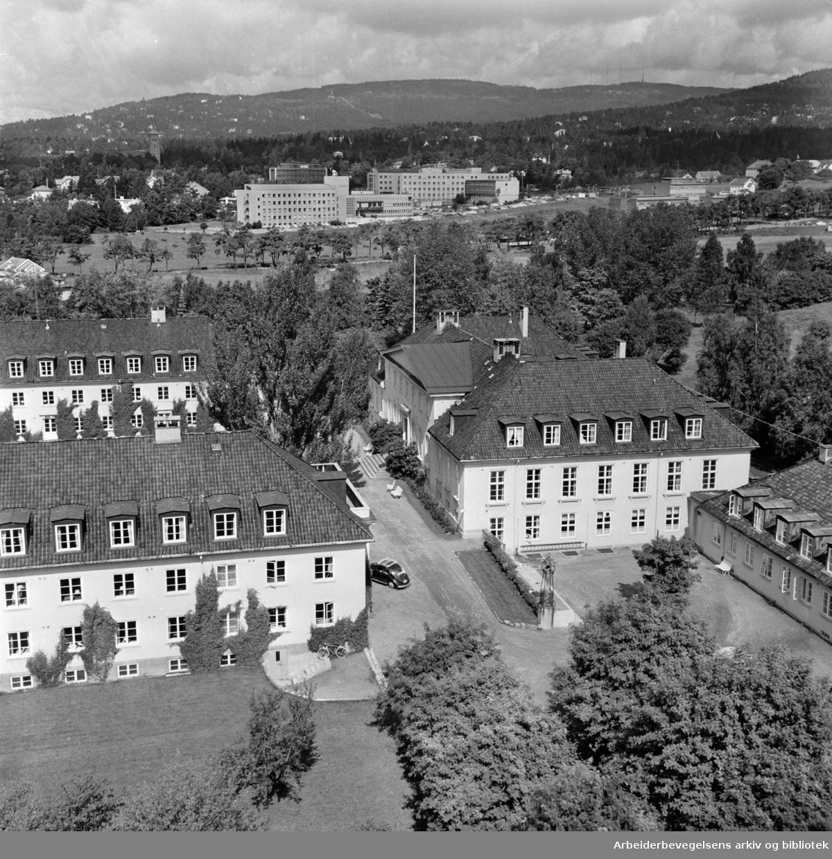 Blindern. Universitetet. Juni 1965