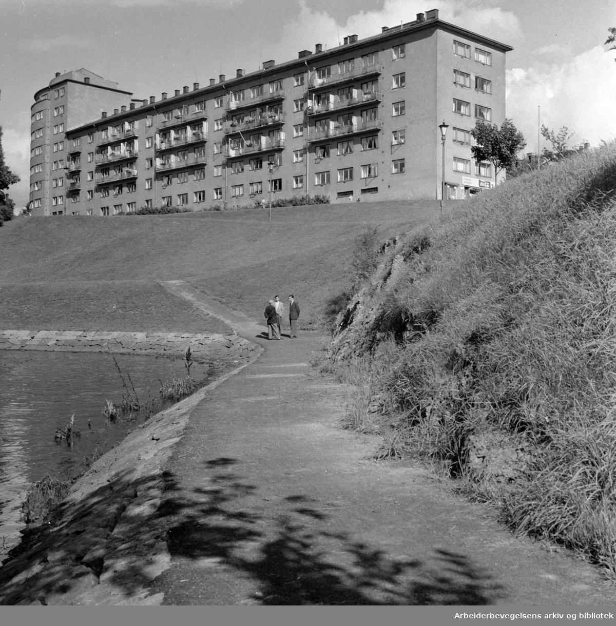 Akerselva ved Sandaker. September 1957