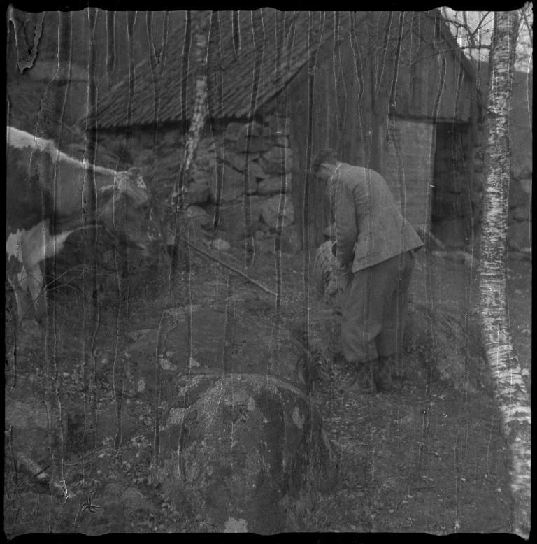 Jon Madland og Lindtner tar pause ved noen kyr og i noen fjellsider. Det er også bilder av landskapet langs Tysdalsvatnet.