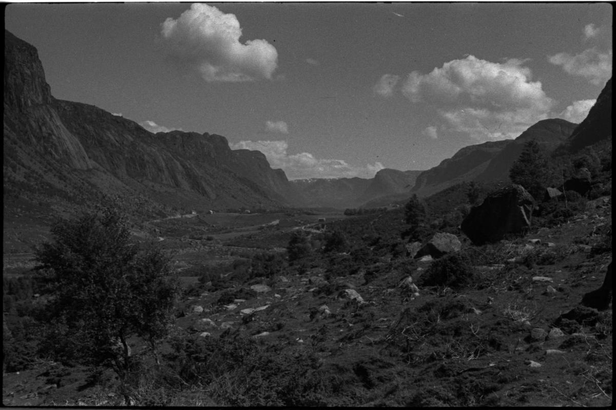Bilder av skuringsstriper i bergene ved Vadla i Jøsenfjorden (bilde 1-4), Aslaug Skjold fra Sauda (bilde 5), Frida og Paul Johannessen på tur ved Indre Eidane i Jøsenfjorden (bilde 6-13), gården Vadla, ved Jøsenfjorden (bilde 14), Espedalen og Helle ved Høgsfjorden (bilde 15-17), en mann, muligens Erik Nesheim, som sitter utenfor hytta si på Helle (bilde 18-19) og sandtak på Vadla og sandterasse ved Ørekvam, nord for Vadla.
