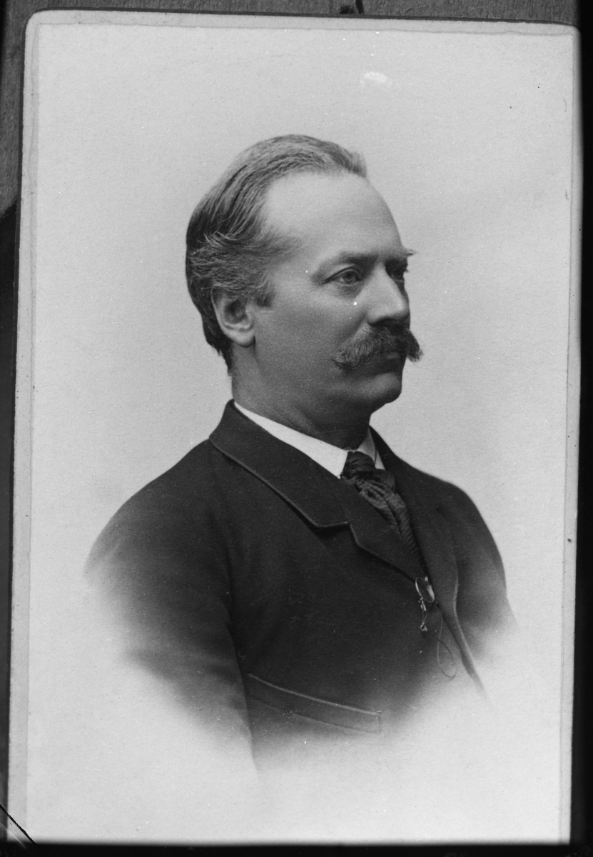Redaktör Albert Gullbergson