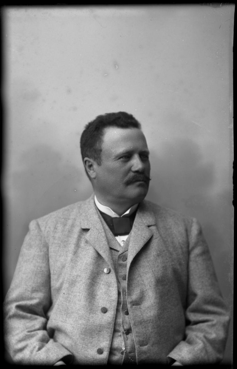 Redaktör Karl Roos