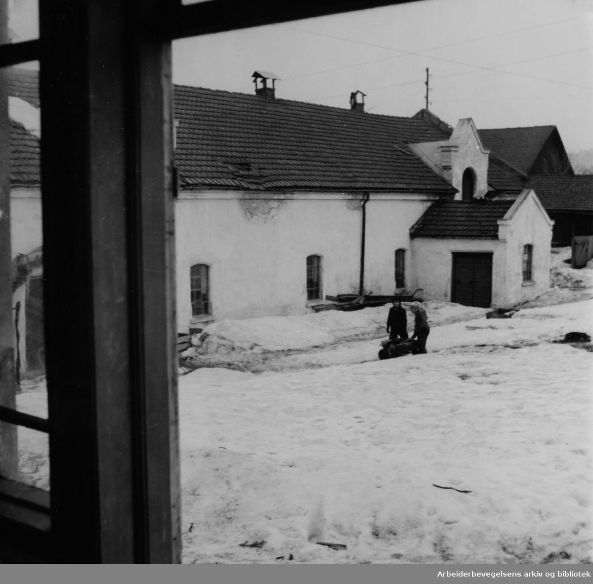 Nordre Åsen gård. Fjøset gjøres om til verksteder. 1950 - 1960