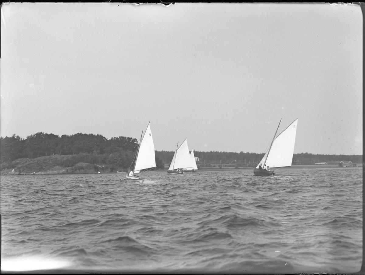 Bild från en torsdagssegling med segelbåtar.