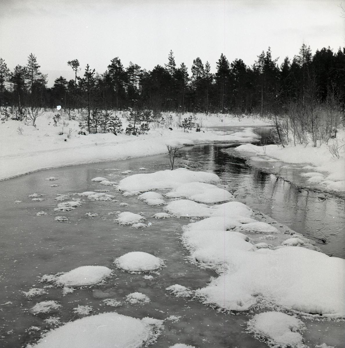 Hölesjöån med snöplättar i tussliknande former, 25 december 1963.