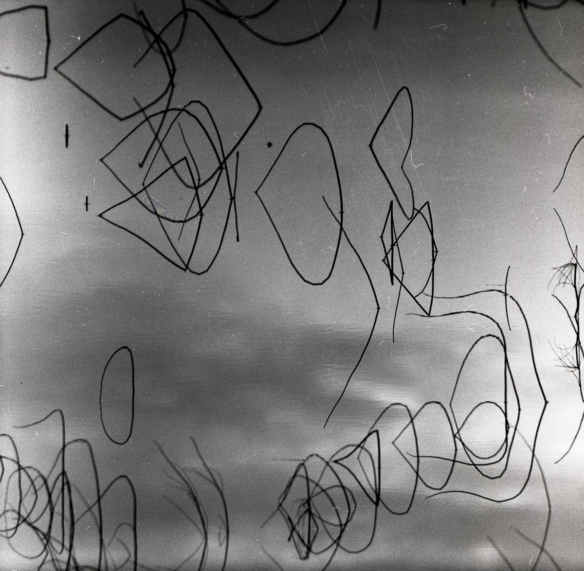 Böjda vassstrån återspeglas i isen vid Skidtjärn den 20 oktober 1957.
