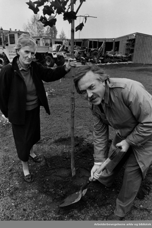 Ballerud driftsstasjon. Tuntreet ble plantet av direktør Ida Fossum Tønnesen og byråd Leif Nybø. Stasjonen er en ny form for grøntanlegg i Oslo. Oktober 1988