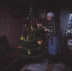 Julgran i Statarlängan.